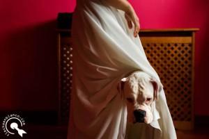 wedding documentary photographer in La Coruña, Spain