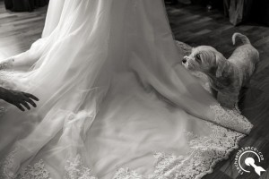 wedding documentary photographer in Morella, Spain